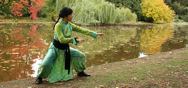 Qi gong jeux des 5 animaux
